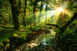 Медитация Омоложение на уровне Светового тела