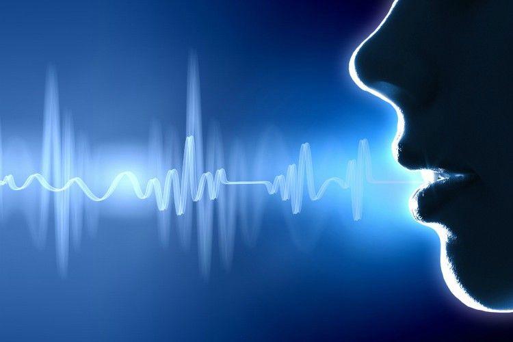 Восприятие голоса