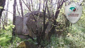 Kamenny`e velikany` poselka Novy`i`