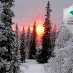 Солярная практика в день зимнего солнцестояния