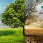 Изменение климата и ход истории. Исследование