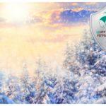 День зимнего солнцестояния 2019. Запросы к Вселенной. Период волшебства (продолжение)