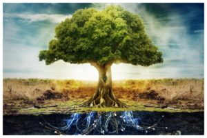 Спутанные корни Древа Рода